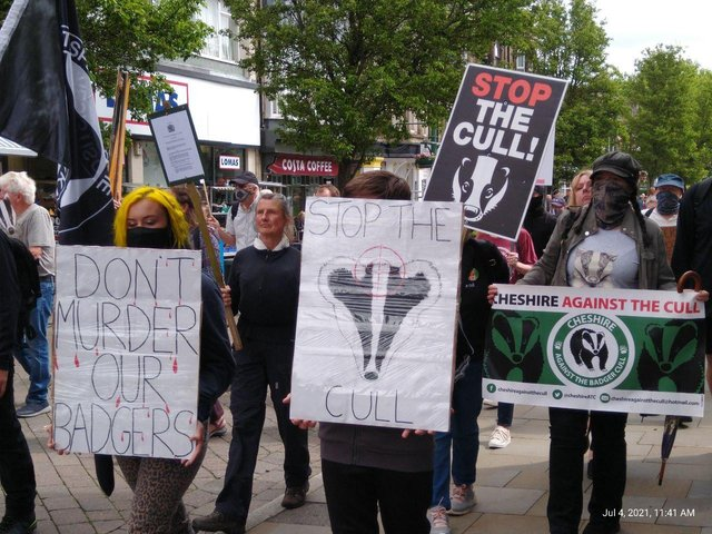 Activists say the badger cull is inhumane and unnecessary when alternatives such as vaccination are available.