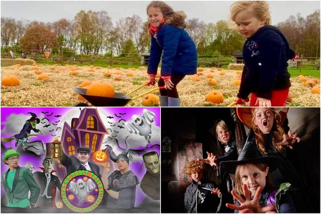 Pumpkin-picking at Matlock Farm Park, bewitching trail at Bolsover Castle or ghost stories aboard a train in Wirksworth will keep families entertained this half-term holiday.