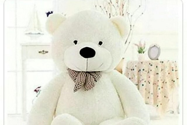 Stunned Derbyshire police officers found a wanted crook hiding underneath a large teddy bear.