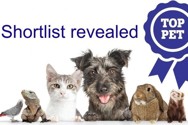 The shortlist for our Top Pet competition has been revealed