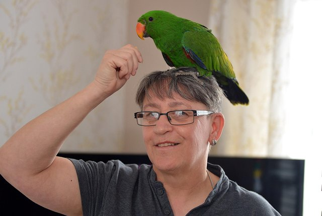 Deb Longden with returned parrot Otto.