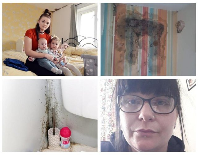 Hollie-Mai Squires (top left) is living in a one-bed flat with her two young children, Elsie-Mai and Oscar, as well as her partner, Joshua Walker. There is mould in her bedroom and elsewhere in the flat. Tammi Evans  and her eight-year-old son both suffer from severe asthma and live in a flat in Newbold  with mould and plaster falling off the walls.