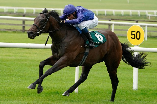 (PINATUBO) – Champion 2yo Pinatubo, who is a warm favourite for the Qipco 2,000 Guineas this Saturday. (Photo by Alan Crowhurst/Getty Images)