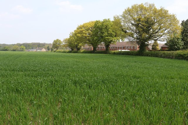 The site of the 300-home development planned on Coupe Lane.