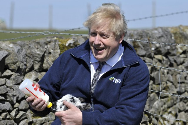 Prime Minister Boris Johnson feeds a lamb during a visit to the Moor Farm in Stoney Middleton as part of the election campaign