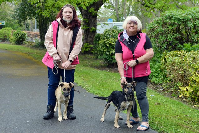 Chesterfield Animal Rescue has just received charity status. Trustees Rachel Bradley and Tina Varley with two rescue dogs.