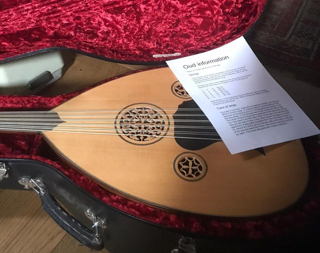 A lute is aplucked stringed musical instrument.