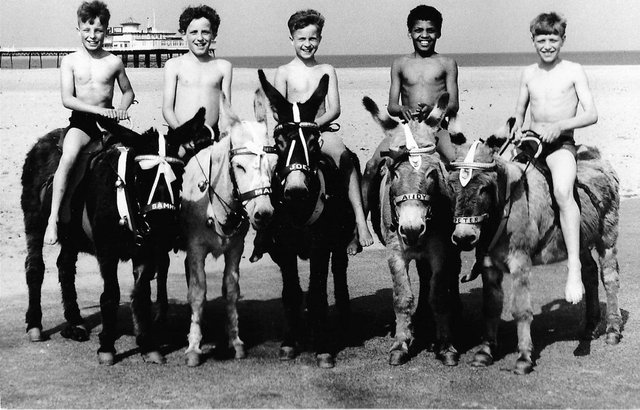 Did you enjoy a donkey ride on the beach in Skegness?