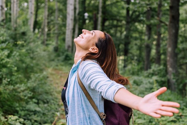 Forest bathing will help stress and anxiety melt away. Photo by Shutterstock/Beliphotos
