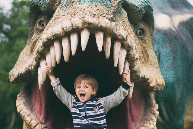 Dino Kingdom is coming to Thoresby Park, near Worksop.
