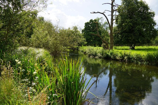 Parkland walks in Haddon Hall's medieval deer park will be launched for the first time this summer.