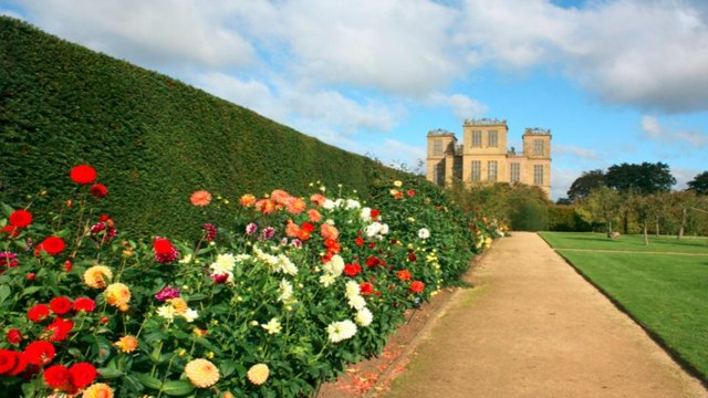 Hardwick Hall's garden looks particularly stunning during the spring/summer season with its vibrant flowers. Photo by National Trust.